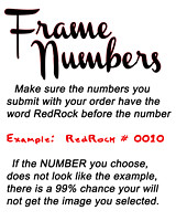 04 FRAME NUMBERS