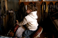 Bell in the tack shed sitting on the kids saddle